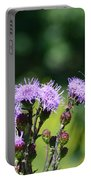 Monarchs And Blazing Star Portable Battery Charger