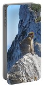 Monkey In Gibraltar Portable Battery Charger