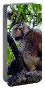 Monkey In Tree Portable Battery Charger