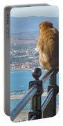 Monkey Overlooking Spain Portable Battery Charger