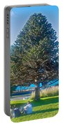 Monkey Puzzle Tree In Central Park In Bariloche-argentina  Portable Battery Charger