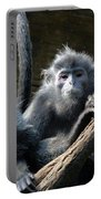 Monkey Trio Portable Battery Charger
