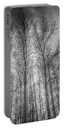 Monochrome Sunset Trees Portable Battery Charger