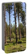 Montana Country  Portable Battery Charger