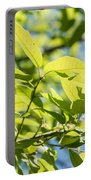 Monterrey Oak Leaves In Spring Portable Battery Charger