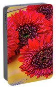 Moody Red Gerbera Dasies Portable Battery Charger