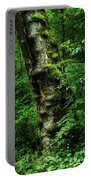 Moody Tree In Forest Portable Battery Charger