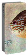 Mooneyes, Sunfish Portable Battery Charger