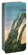 Moonset-bristlecone Pine Portable Battery Charger