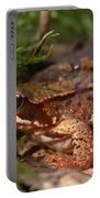 Moor Frog In September  Portable Battery Charger