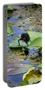 Moorhen N Baby 2 Portable Battery Charger
