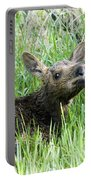 Moose Baby Portable Battery Charger