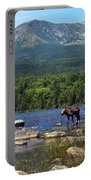 Moose Baxter State Park Maine 2 Portable Battery Charger
