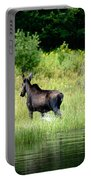 Moose Cow Portable Battery Charger