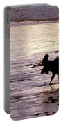 Moose Crossing Portable Battery Charger