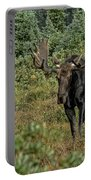 Moose In Shrubs Portable Battery Charger