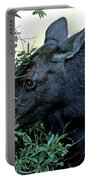 Moose In Wyoming # 3 Portable Battery Charger