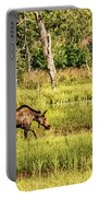 Moose Meadows Portable Battery Charger