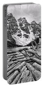 Moraine Lake Driftwood No 1 Portable Battery Charger