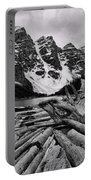 Moraine Lake Driftwood No 2 Portable Battery Charger