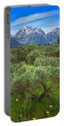 Moran Meadows Portable Battery Charger