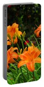 More Orange Daylilies Portable Battery Charger