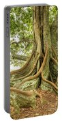 Moreton Bay Fig 2 Portable Battery Charger