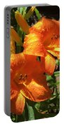 Morning Daylilies Portable Battery Charger