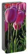 Morning Dew Tulips Portable Battery Charger