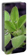 Dewdrops On Leaves Portable Battery Charger
