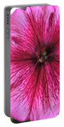 Morning Glory 2 Portable Battery Charger
