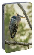 Morning Light On Great Blue Heron Portable Battery Charger