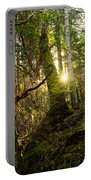 Morning Stroll In The Forest Portable Battery Charger
