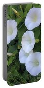 Morning Trumpets Portable Battery Charger
