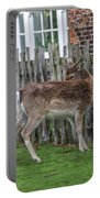 Morning Visitor Portable Battery Charger