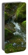 Mose On Rocks  Portable Battery Charger