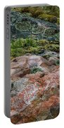 Moss And Lichen Abstract Portable Battery Charger