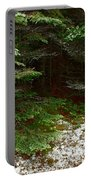 Moss And Lichen Portable Battery Charger
