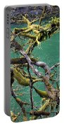 Moss And Trees Portable Battery Charger