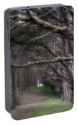 Moss Beach Trees 4191 Portable Battery Charger