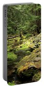 Moss By The Stream Portable Battery Charger