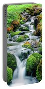 Moss Covered Stream Portable Battery Charger