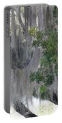 Moss Draped Tree Portable Battery Charger
