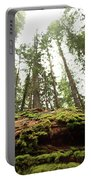 Moss On A Log Under The Cedars Portable Battery Charger