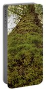 Moss Up A Tree  Portable Battery Charger