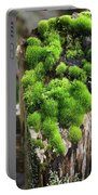 Mossy Fence - 365-321 Portable Battery Charger