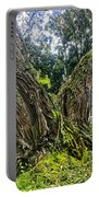 Mossy Old Tree Portable Battery Charger