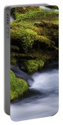 Mossy Rocks Oregon 3 Portable Battery Charger