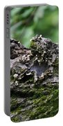 Mossy Tree Knot Portable Battery Charger