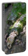 Mossy Tree Portable Battery Charger